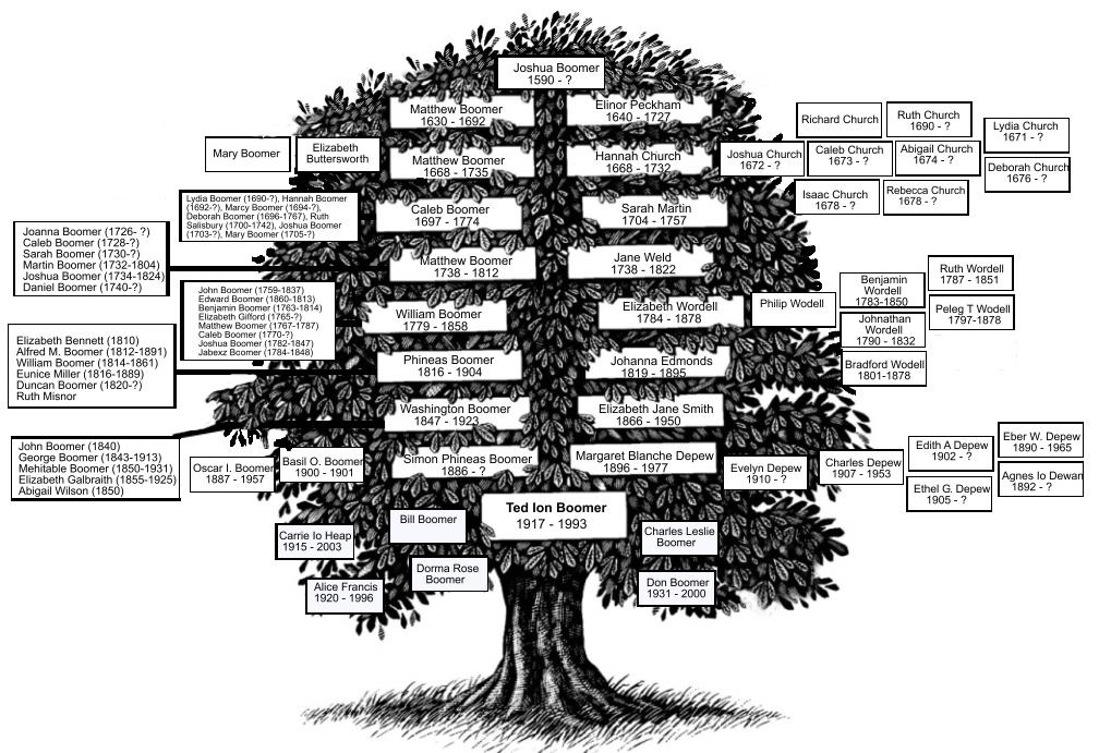 family health tree template. family tree template for word. different Microsoft Office templates that